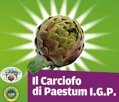 img_carciofo